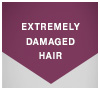 SKP_TCT_8_EXTREMELY_DAMAGED_HAIR_100x90