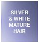 Silver & White Mature Hair
